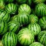 【饮食】西瓜要怎么吃好吃?