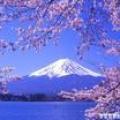 【旅游】你去过日本吗?
